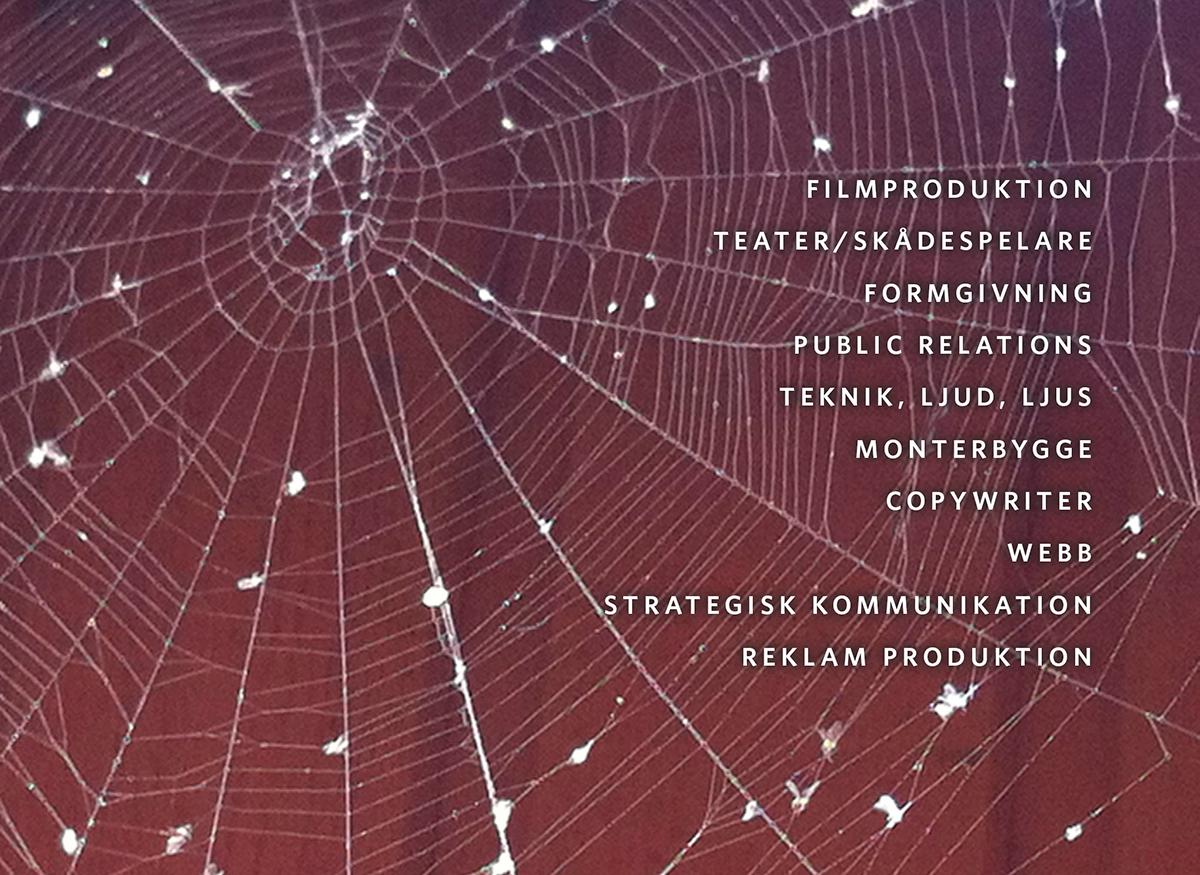 Vårt team, Spindelnät – Actit Kommunikation